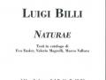 29a. Luigi Billi - Mag. Ott. 2006